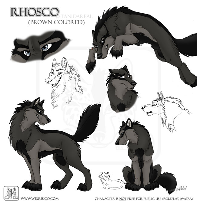Write a character sketch of father wolf